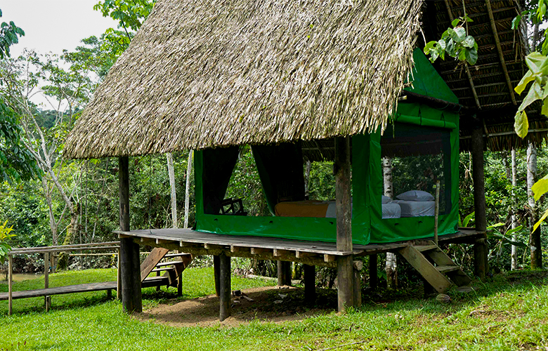 amazon yasuni camp