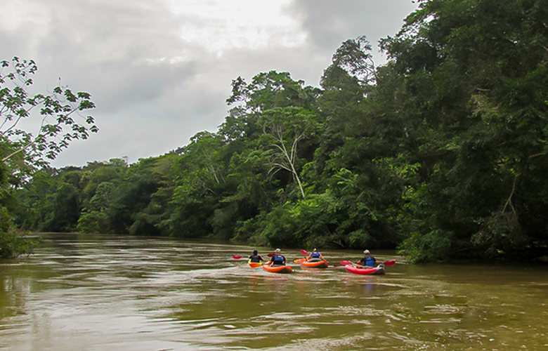 amazon yasuni kayak