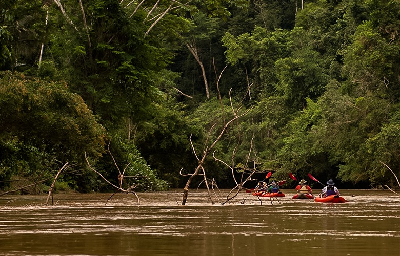 amazon jungle kayak